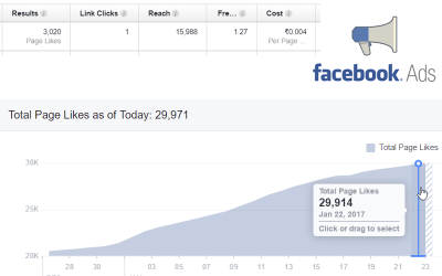 Setup Facebook ad campaign for cheap Page Likes